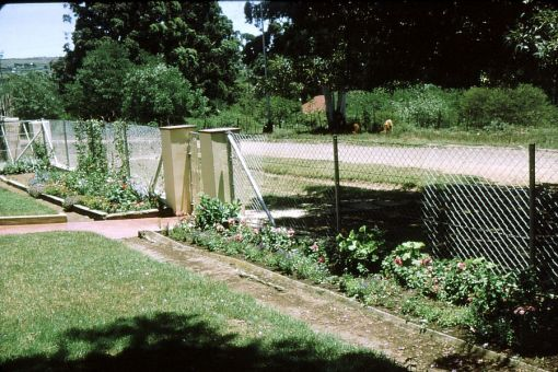 Margery always loved gardening. This is the garden at the front gate of the Old Hospital Road house